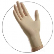 Latex Powder Free Exam Gloves